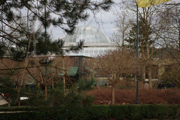 CenterParcs-Bispinger-Heide-2